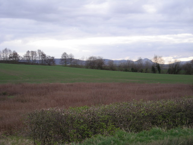 Field beside the B4380