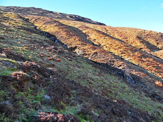 Eastern slopes of Creag Dubh