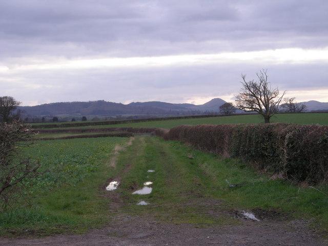 Footpath to Eyton on Severn