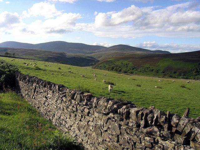 Fields above Berriedale Water