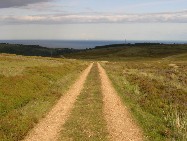 Track on Langwell Estate