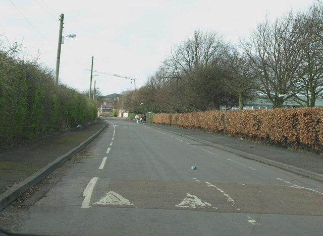 Palace Road