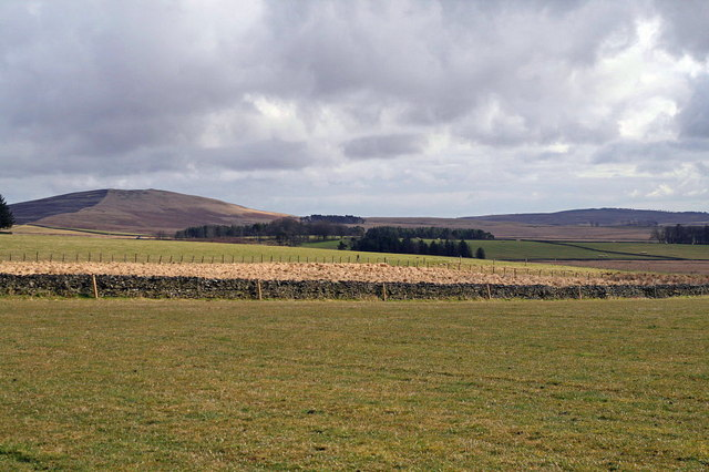 Farmland north of Wedderlie