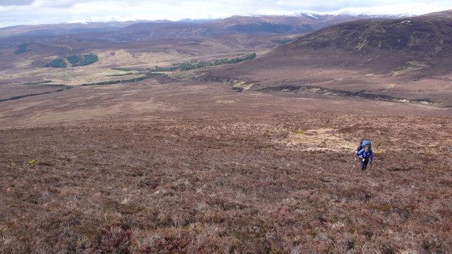 Slopes of Carn Loch nan Amhaichean