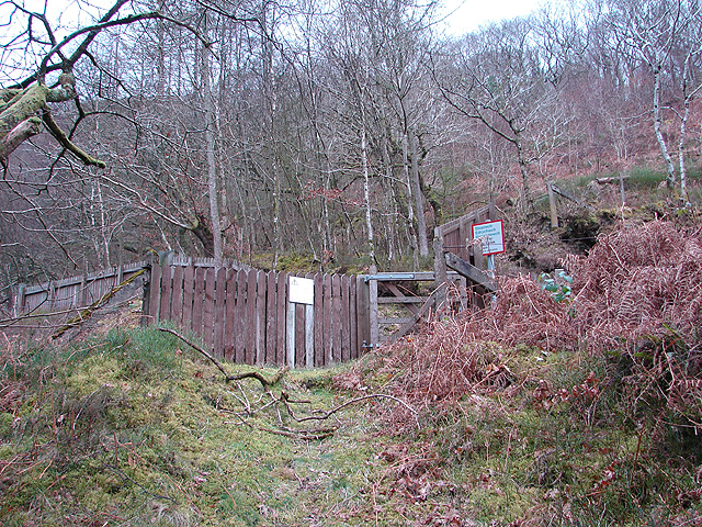 Approach to the Vale of Rheidol Railway