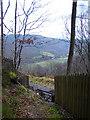 SN7178 : Vale of Rheidol Railway foot crossing by John Lucas