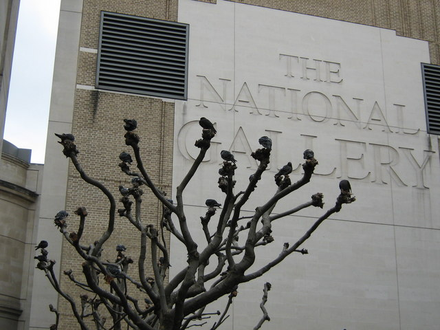 Pigeons at the National Gallery