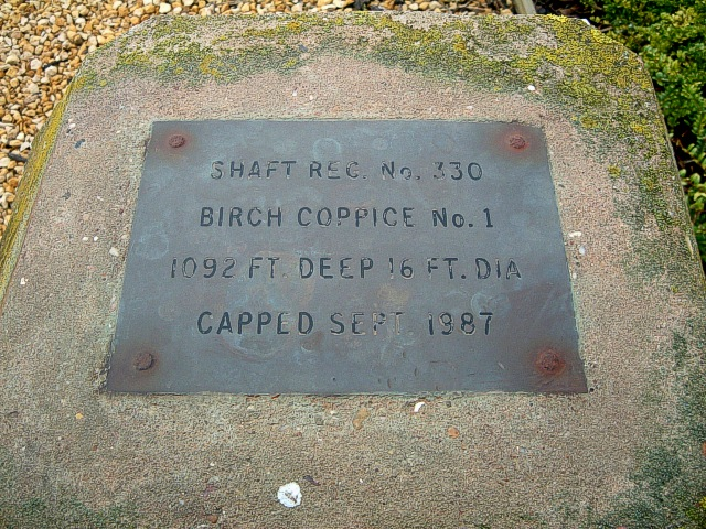 Cap : Birch Coppice No.1 Shaft