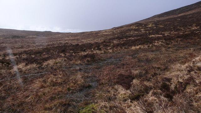 Wet ground, West of Loch Bealach Culaidh