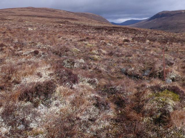 Fencepost on rough moorland