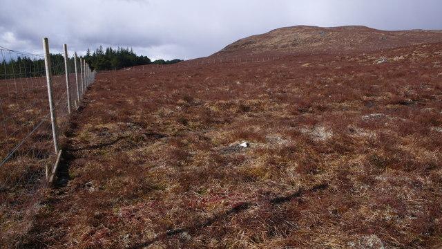Deer fence, Meall a Bhaird
