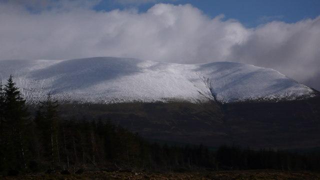Ben Wyvis over Garbat Forest