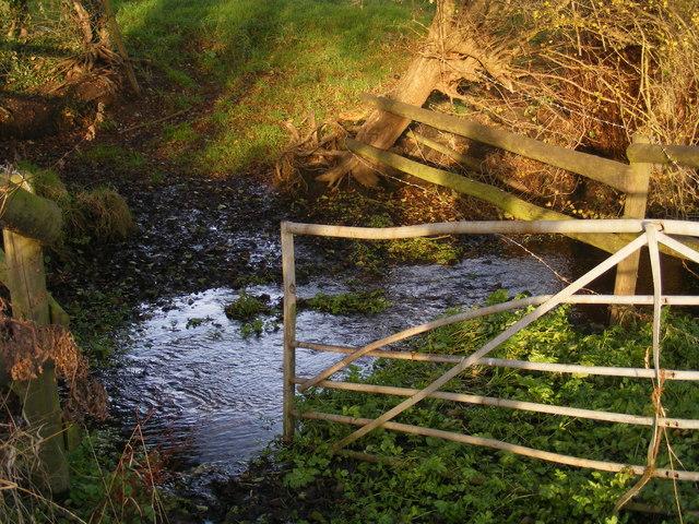 Earsham, meadows