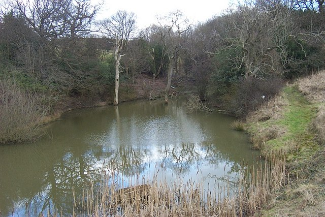 Pond on Beldon Brook