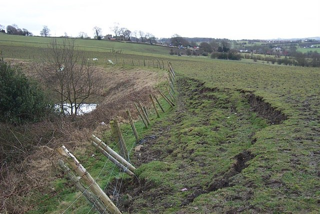 Landslip at Beldon Pond