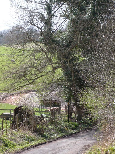 Farm track near Lynsted