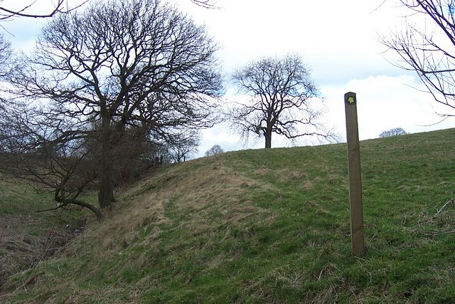 Footpath from Linfit Fold to Lower House