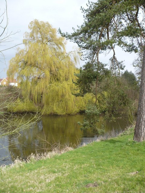 A willow tree by the water next to The Valance