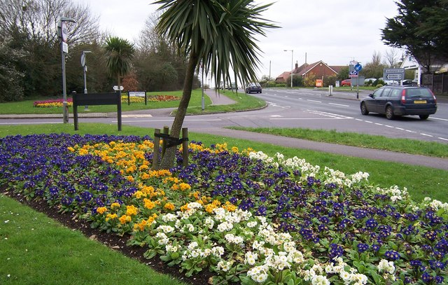 Floral Display-Southampton Hill