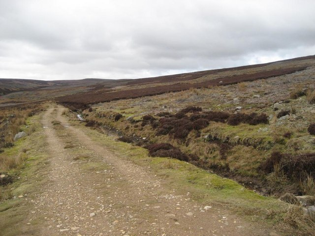 Track into Woodale grouse moor