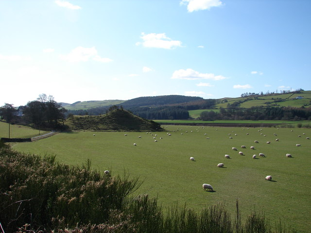Motte and Bailey near Dinning, with Sheep