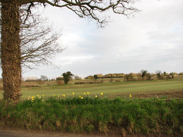 Field beside Stratton Road