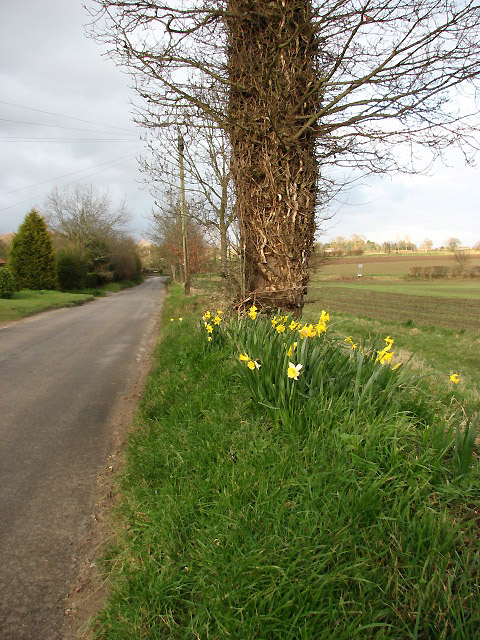 Looking NE along Stratton Road