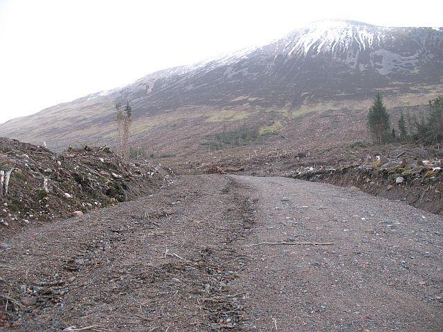 New forest road beneath Meall a' Chaorainn