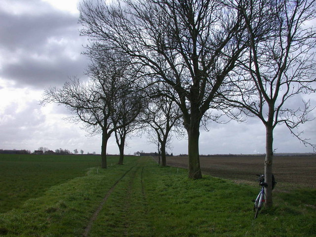 Bridleway to Haslingfield