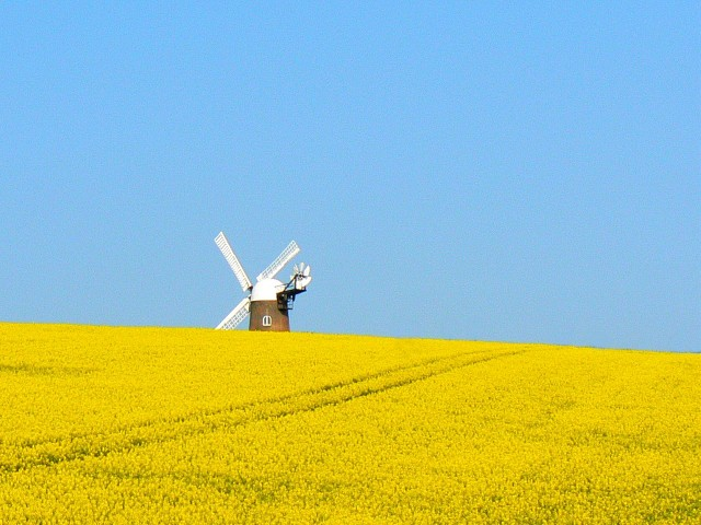 Wilton Windmill, near Wilton