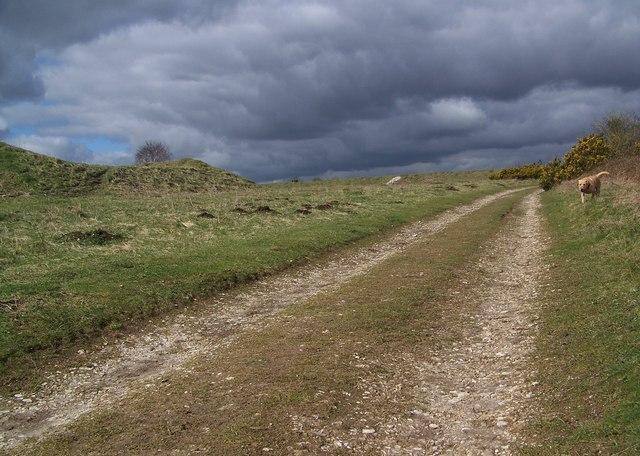 Dark clouds over Martin Down