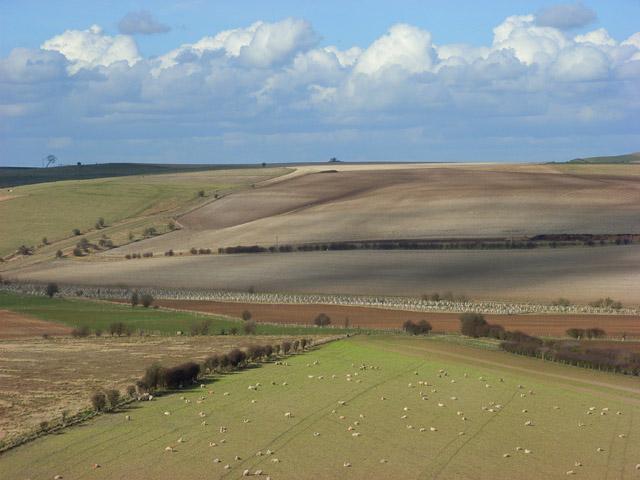 The Berkshire Downs between Lambourn and Ashbury