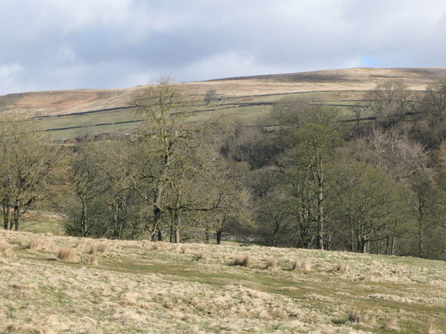 The valley of Rookhope Burn (2)