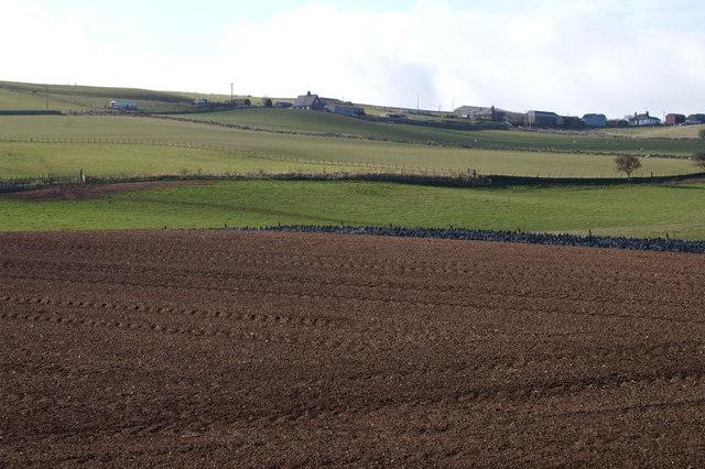 Farmland on the Scottish border