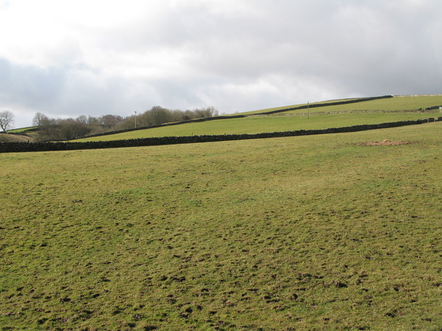 Pastures near South Hanging Wells