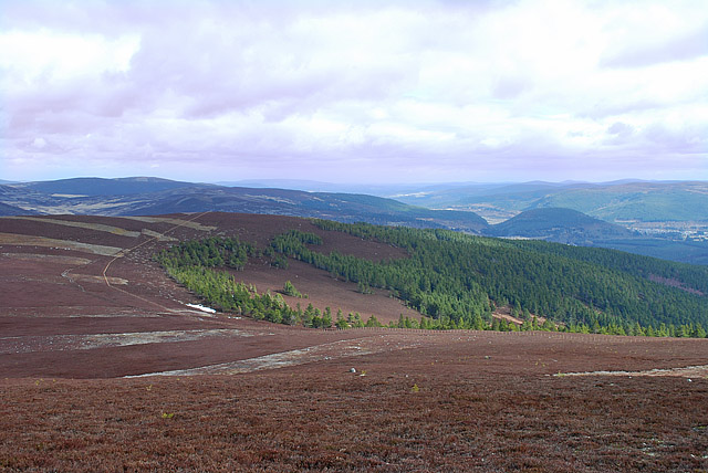 East slopes of Creag na Creiche