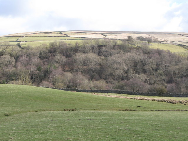 The valley of Rookhope Burn (3)
