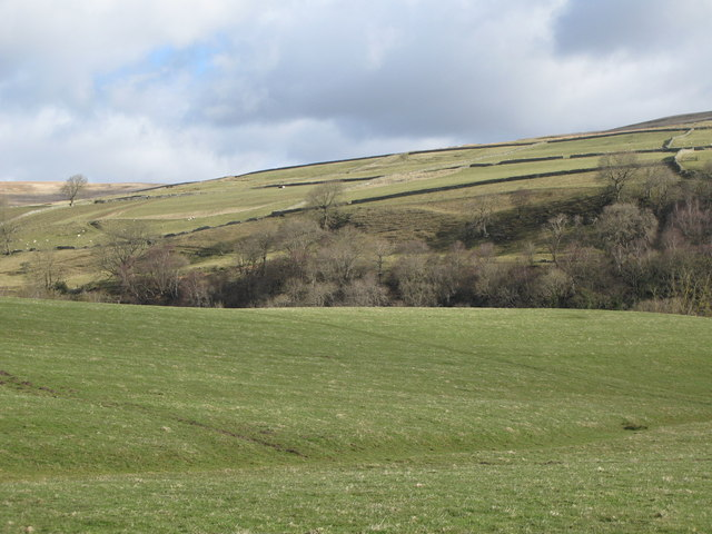The valley of Rookhope Burn (4)