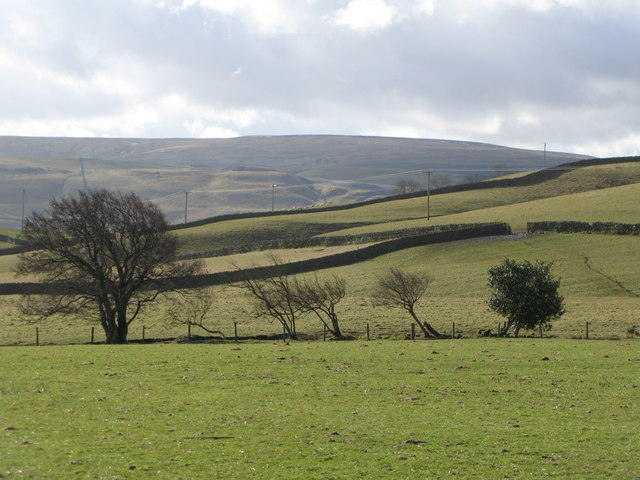 Pastures south of Sunderland Farm