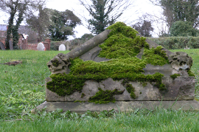 Moss covered grave