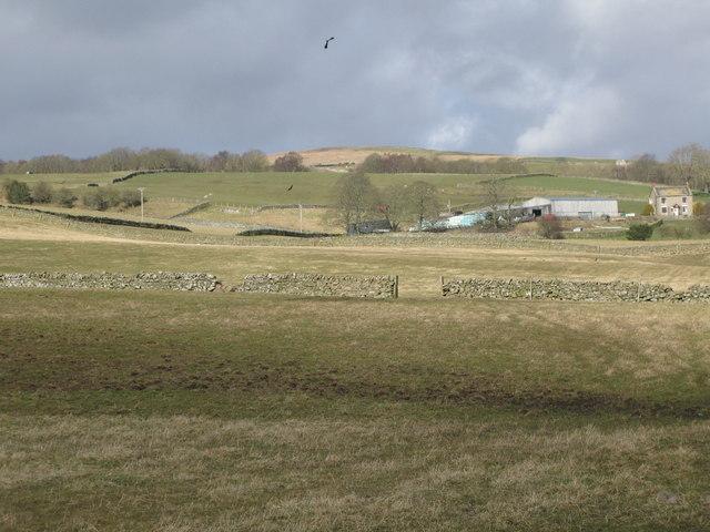 Pastures near Sunderland Farm