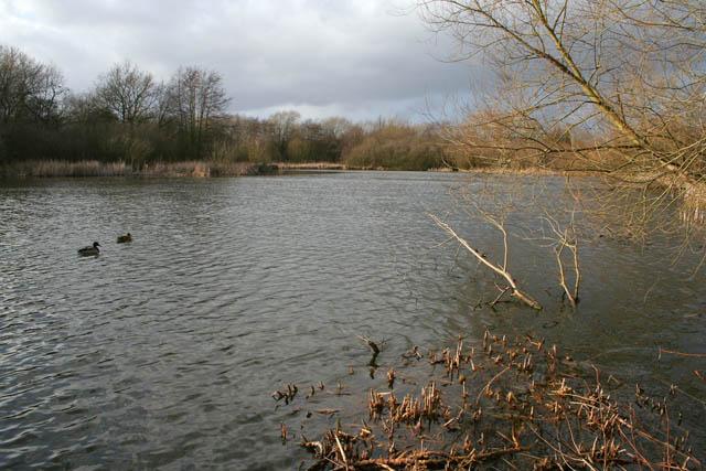 A walk round Martin's Pond (1)