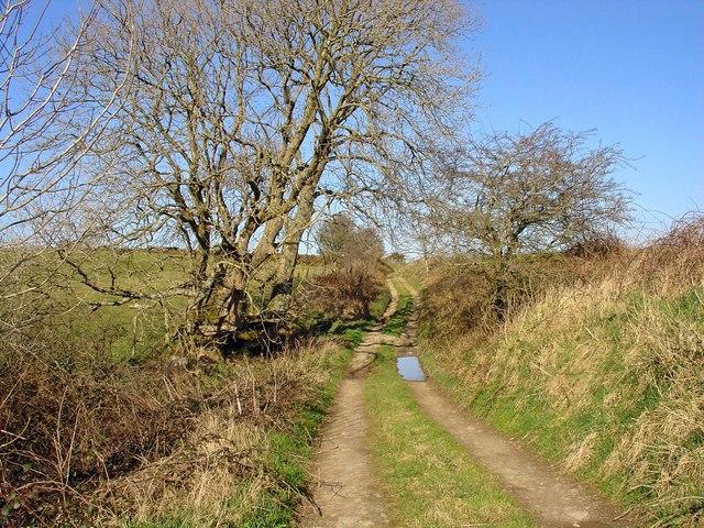 Bridleway near Monington