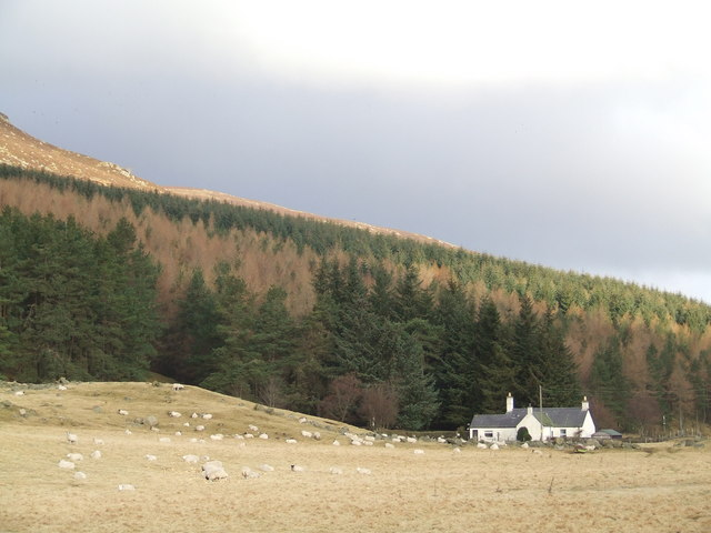 Cottage beside Braeminzion Plantation