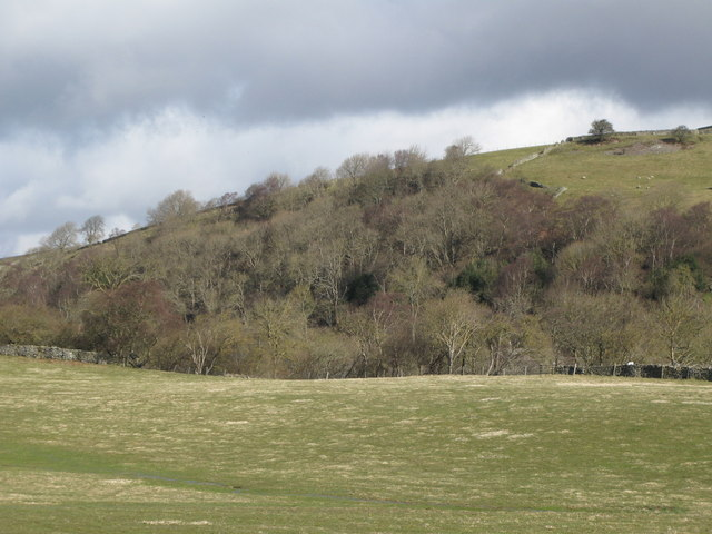 The valley of Rookhope Burn (7)