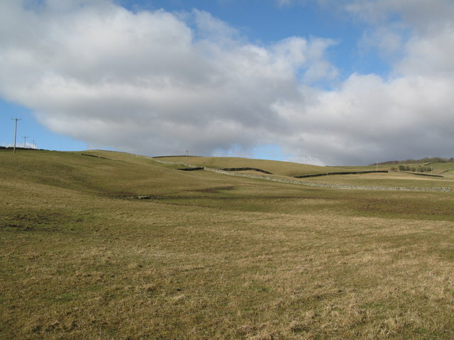 Pastures above Eastgate