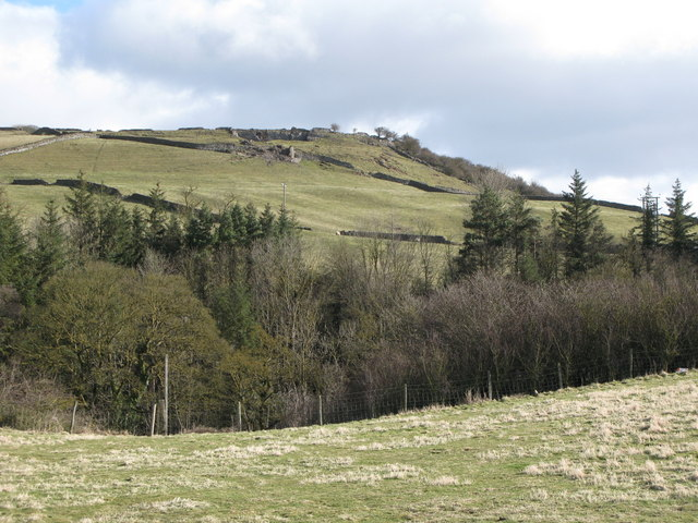 The valley of Rookhope Burn
