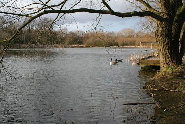 A walk round Martin's Pond (3)
