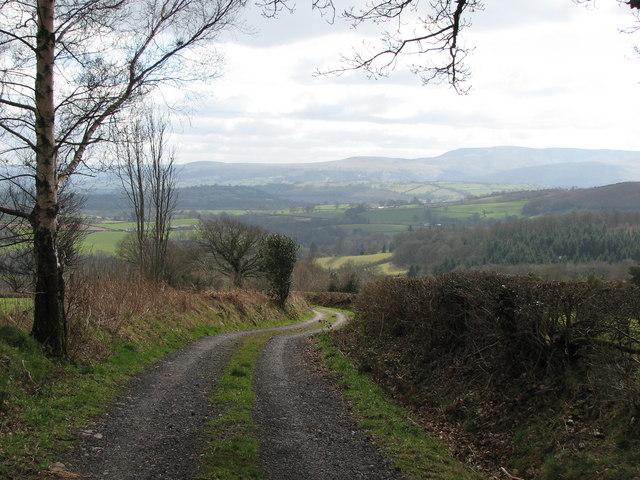 Track above Sarnau