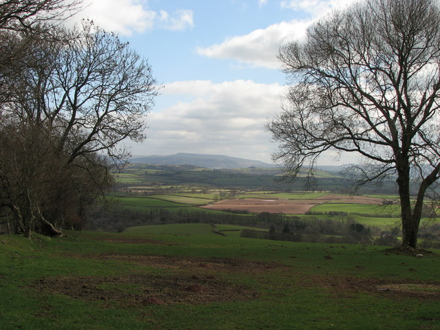View from lower slopes of Cefn Sarnau